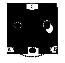 A poly triad, a polycule of three people